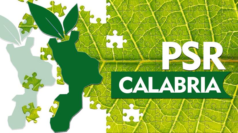 PSR Calabria 2014-2020 – Pacchetto Giovani