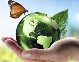 Aperta la consultazione pubblica per la STRATEGIA NAZIONALE BIOECONOMIA – BIT Bioeconomy in italy